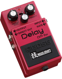 Boss DM2W Analog Delay WAZA CRAFT