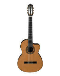 Ibanez GA6CE AM Classical Guitar